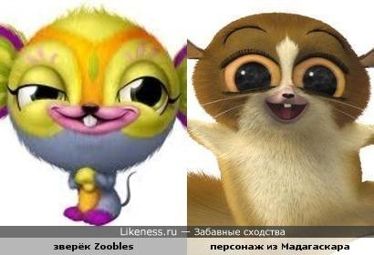 Зверёк Zoobles похож на персонажа из Мадагаскара