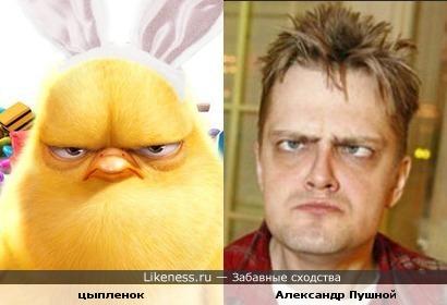 Цыпленок из Бунта ушастых похож на Александра Пушного