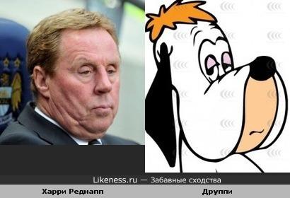 Футбольный тренер Харри Реднапп похож на Друппи