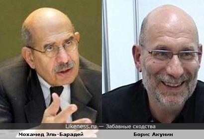 Мохамед Эль-Барадей похож на Бориса Акунина