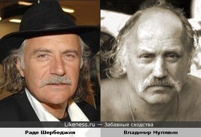 Раде Шербеджия и Владимир Мулявин имеют что-то общее