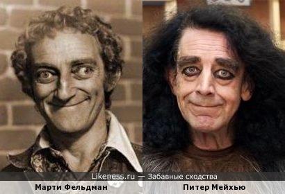 """Игорь (""""Молодой Франкенштейн"""") похож на Чубакку (""""Звездные войны"""")"""