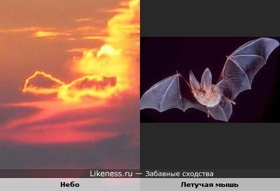 Небо похоже на летучую мышь