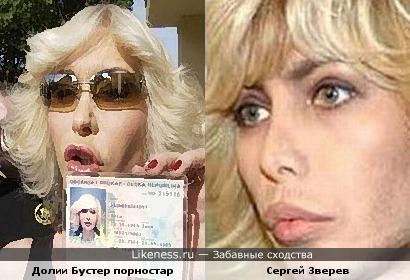 Сергей Зверев похож на Долии Бустер (порностар)