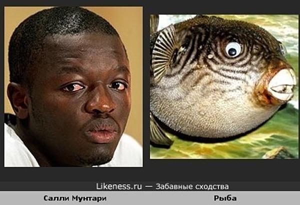 Ганский футболист Салли Мунтари похож на экзотическую рыбу