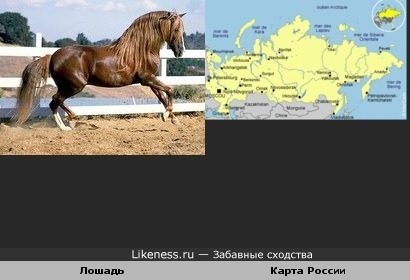 Карта России напоминает лошадь