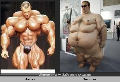Сходство налицо