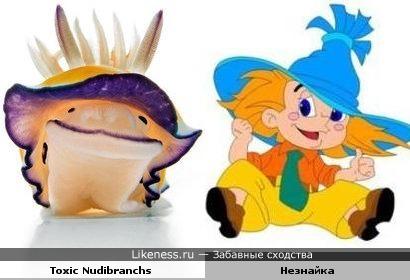 Моллюск и незнайка