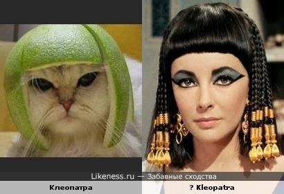 """Макияж а-ля """"Женщина - кошка"""""""