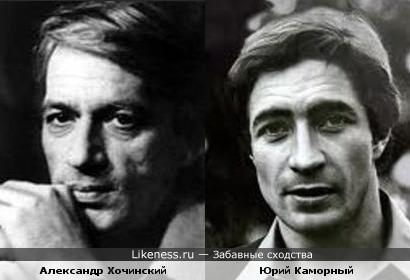 Александр Хочинский и Юрий Каморный похожи