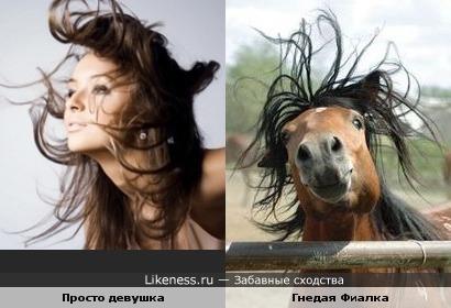 Волосы и грива...