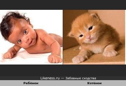 Забавное сходство:ребёнок и котёнок...