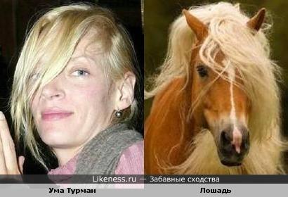 Некоторые лошади как девушки...