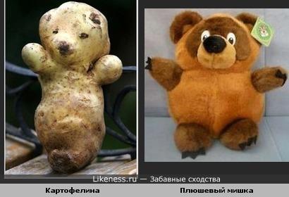 Картофелина похожа на игрушечного медвежонка