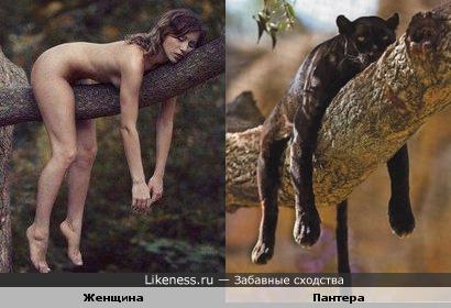 Женщина-пантера
