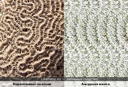 Коралловый окатыш и ажурная вязка
