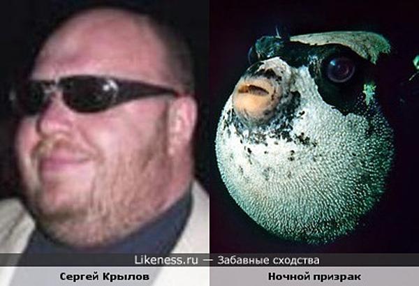 Сергей Крылов и Ночной призрак