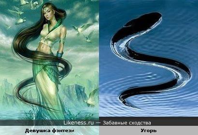 S-образное сходство