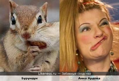 Бурундук и Анна Ардова
