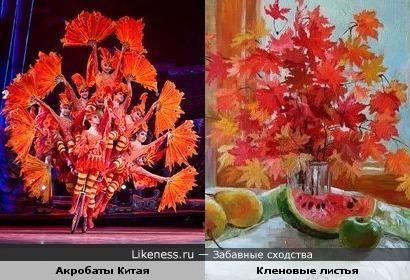 Акробаты Китая напоминают букет из кленовых листьев