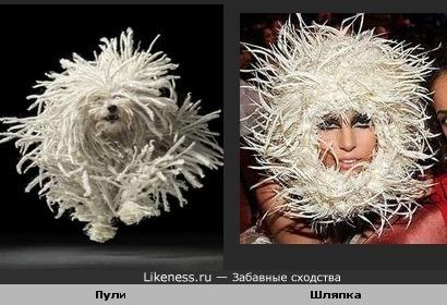 Шляпка похожа на пули )))