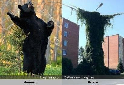 Пугала )))