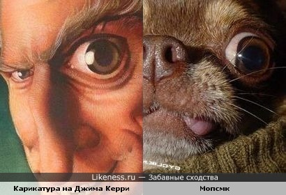 Глаз на выкате! )))