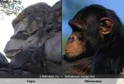 Эта гора похожа на профиль шимпанзе