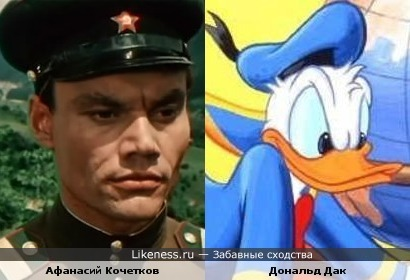 Дональд Дак напомнил Афанасия Кочеткова