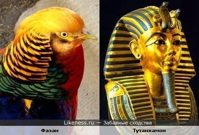 Золотой фазан и золотая маска Тутанхамона (10 кг чистого золота )