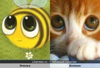 Я пчёлка, пчёлка, пчёлка, я вовсе не медведь!