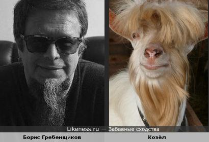 Борис Гребенщиков и симпатичный козёл