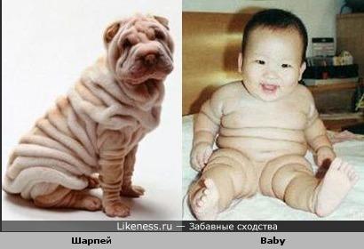 Чудо в морщинку )))