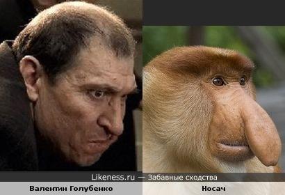 Валентин Голубенко и носач