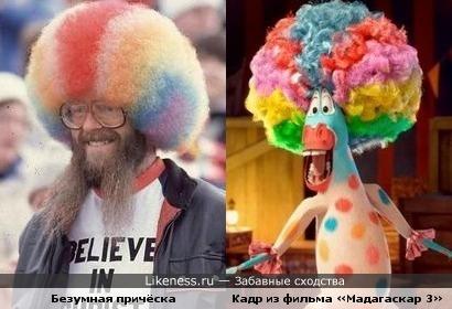 Разноцветные причёски