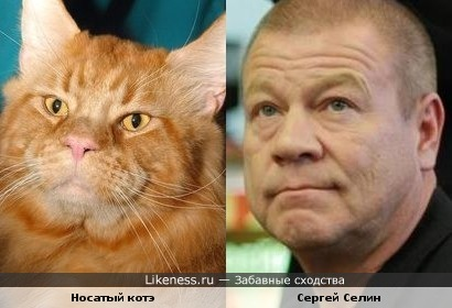 Носатый котэ и Сергей Селин