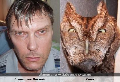 Станислав Лесной и сова