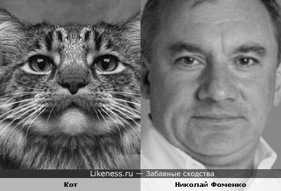 Кот и Николай Фоменко