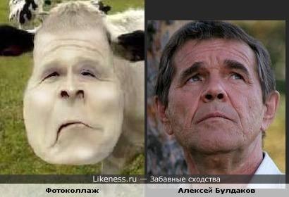 Фотоколлаж и Алексей Булдаков