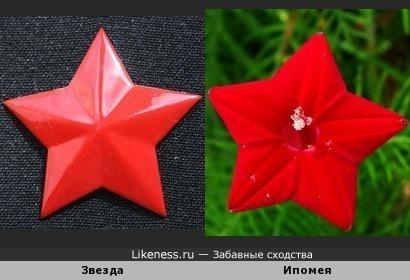 Красные звёзды