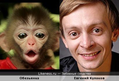 Обезьянка и Евгений Кулаков