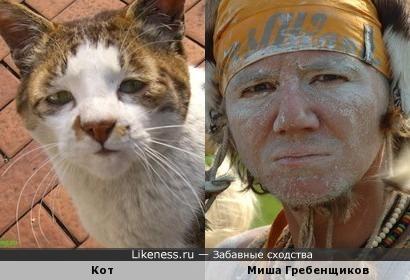 Кот и Миша Гребенщиков