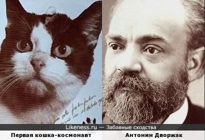 Первая кошка-космонавт и Антонин Дворжак