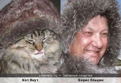 Кот Якут и Борис Ельцин