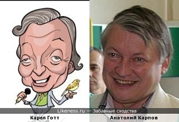 Карикатура на Карела Готта напомнила Анатолия Карпова