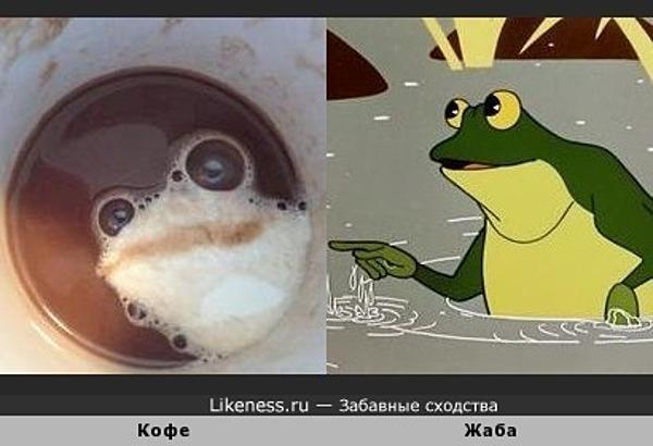 Пена в чашке кофе напоминает жабу