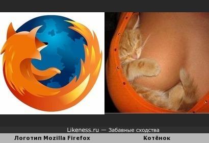 Котёнок на груди напоминает логотип Mozilla Firefox