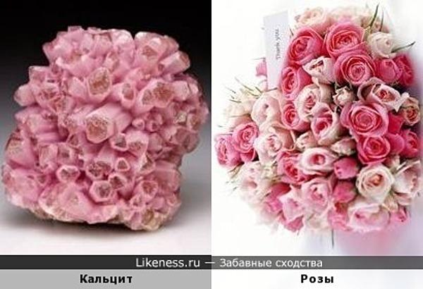 Этот кальцит напоминает букетик роз