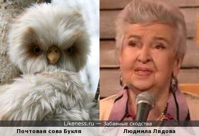 Почтовая сова Букля и Людмила Лядова