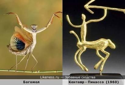 Богомол - кентавр
